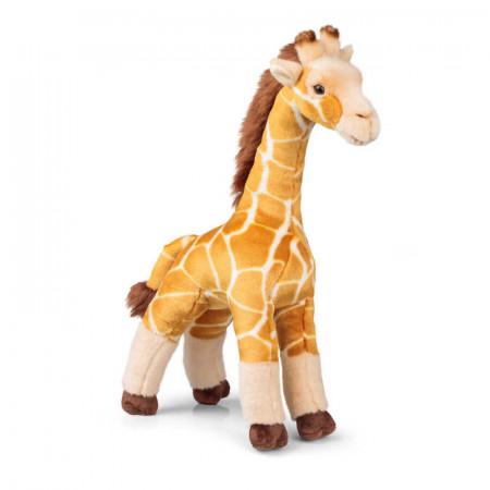 Peluche Animigos - Giraffe