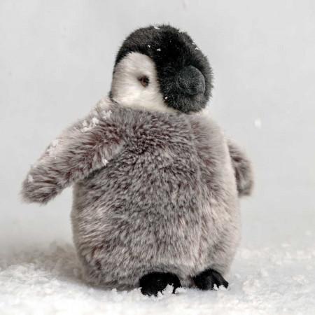Bébé Pingouin Empereur