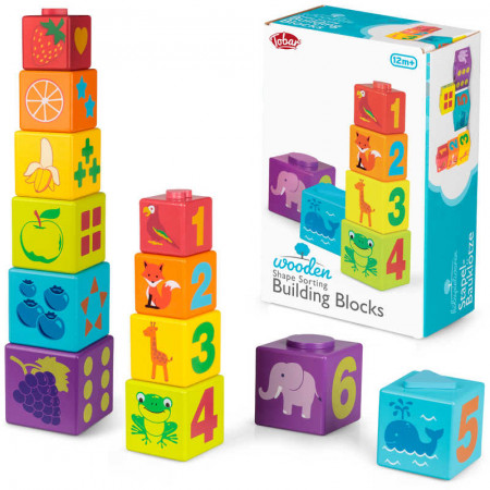 Shape Sorting Building Blocks