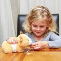 New Born Guinea Pig